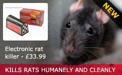 Electronic rat killer - £33.99